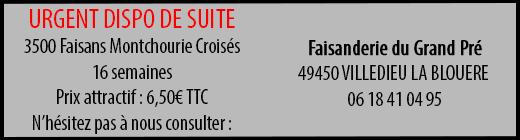 Annonce-2-faisanderie-du-grand-pre