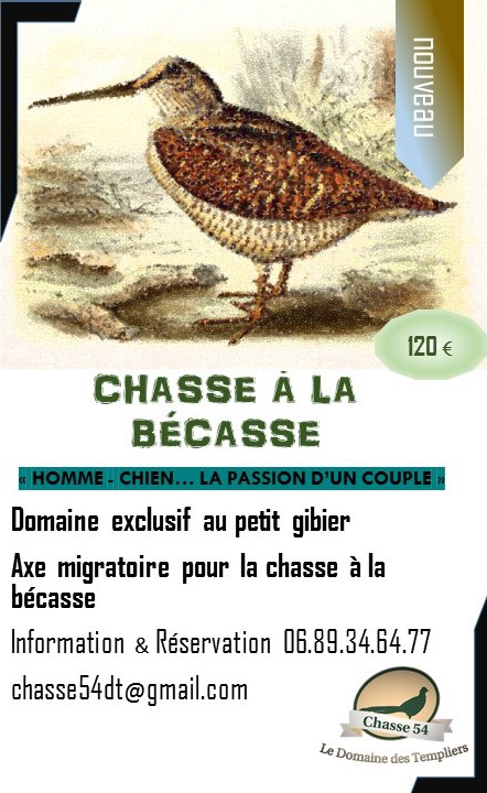 chasse-a-la-becasse-domaine-des-templiers-54-1