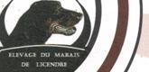 Elevage-du-mairais-de-licendre-165-x-80