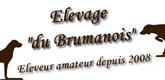 elevage-du-brumanois-165x80