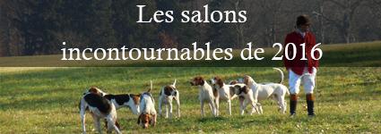 salons-incontournables-2016