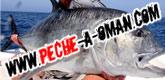 fishon-tour 165x80-Oman