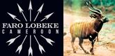 faro-lobeke-165x80
