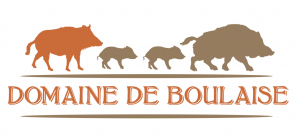 Boulaise