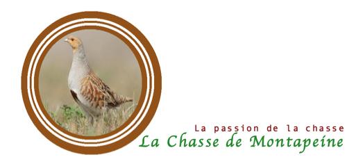 Chasse-du-Montapeine