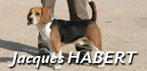 Habert-Jacques-165-x-80