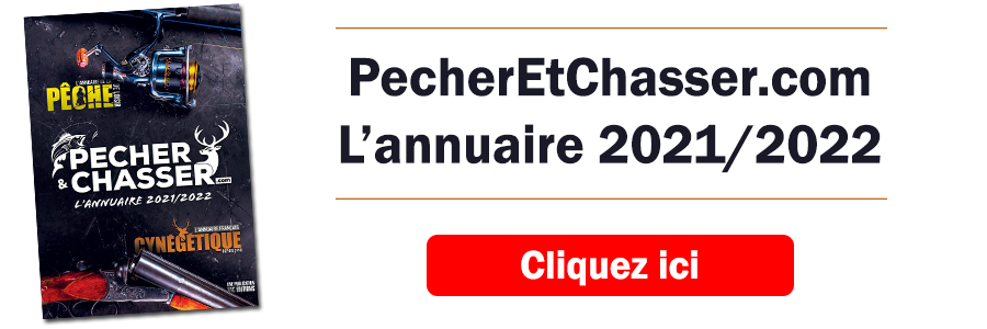PC-2020-2021