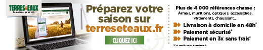 Terreeteaux_BANDEAU WEB_CHASSE_520x100px