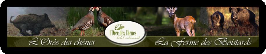 l-oree-des-chenes2