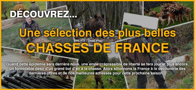 Découvrez une sélection des plus belles chasses de France