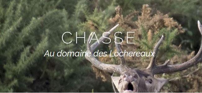 A partir de 210€ la journée au DOMAINE DE LOCHEREAUX (49)