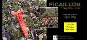 Le Picaillon