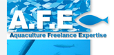 – AFE CONSULTING –