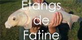 – ÉTANG DE FATINES –