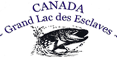 IFC Irlande et Canada