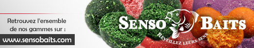 Senso-Baits-520-x-100